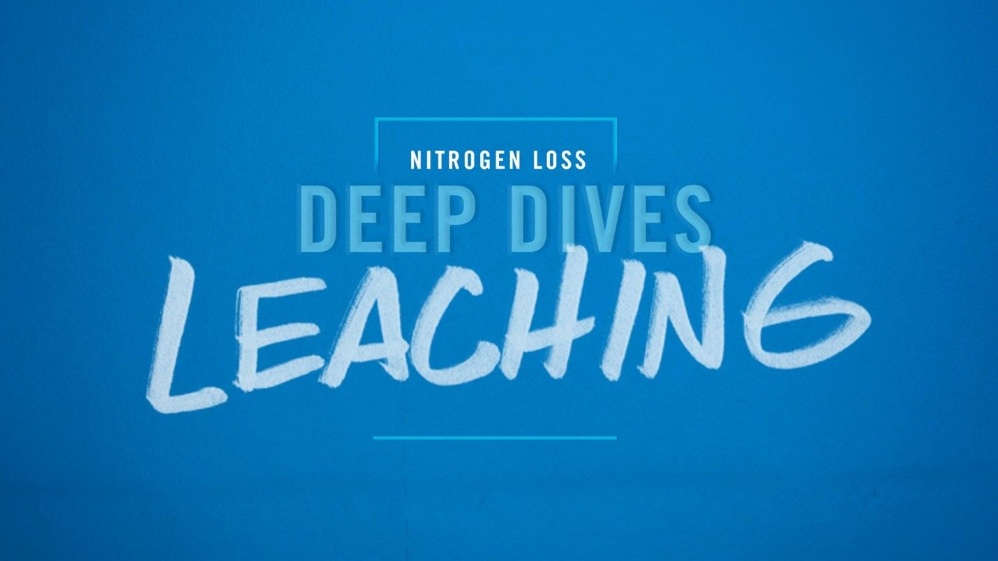 Deep Dive Video on Leaching