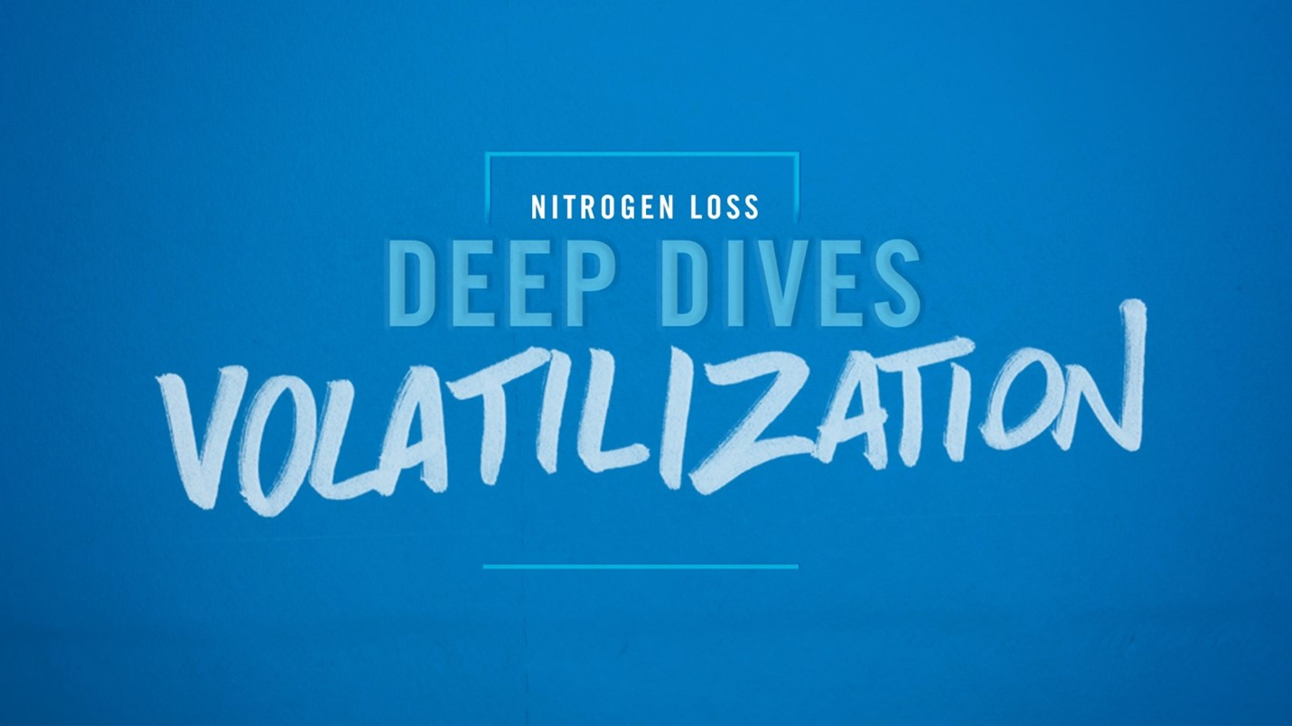 Deep Dive Video - Volatilization