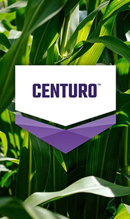CENTURO® is now available in Canada