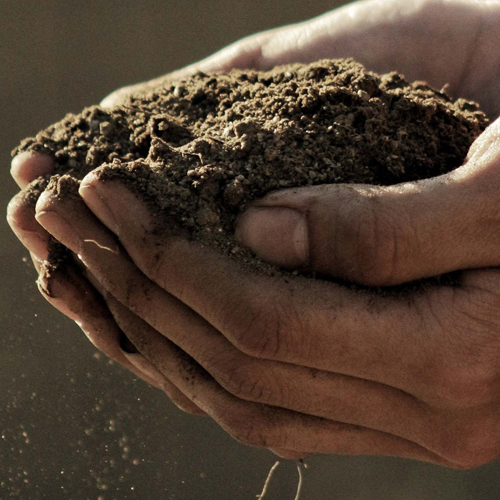 Farmer holding soil within his hands